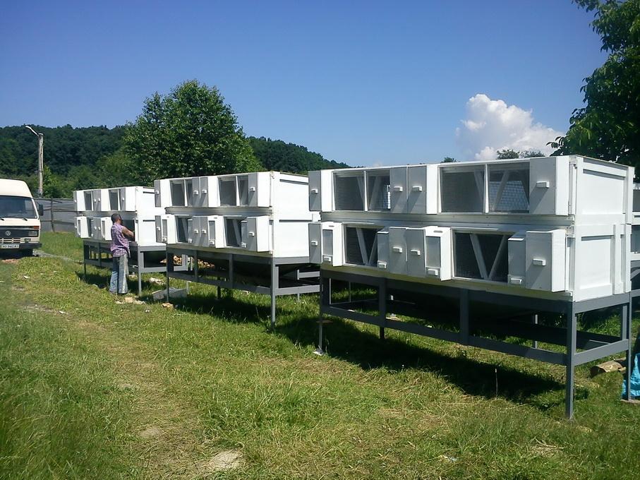 technology of eco-rabbit breeding